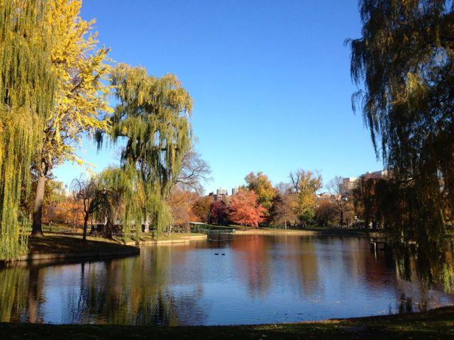 Lagoon in the Public Garden.