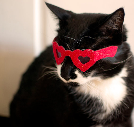 Glasses for your furry Valentine.