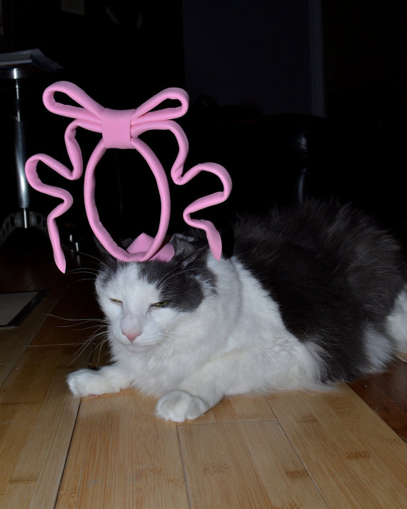 The cat in the (royal) hat.