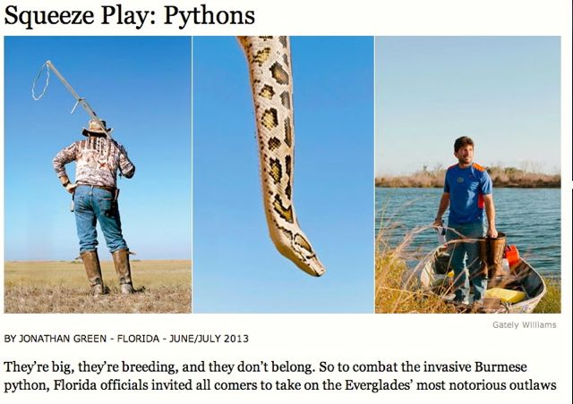 From the Sporting Life section.  [image from gardenandgun.com]