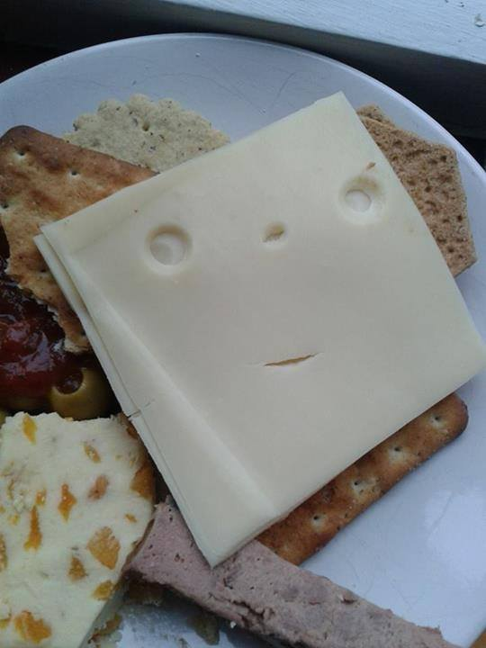 Say cheese. [image from Things with Faces Facebook page]