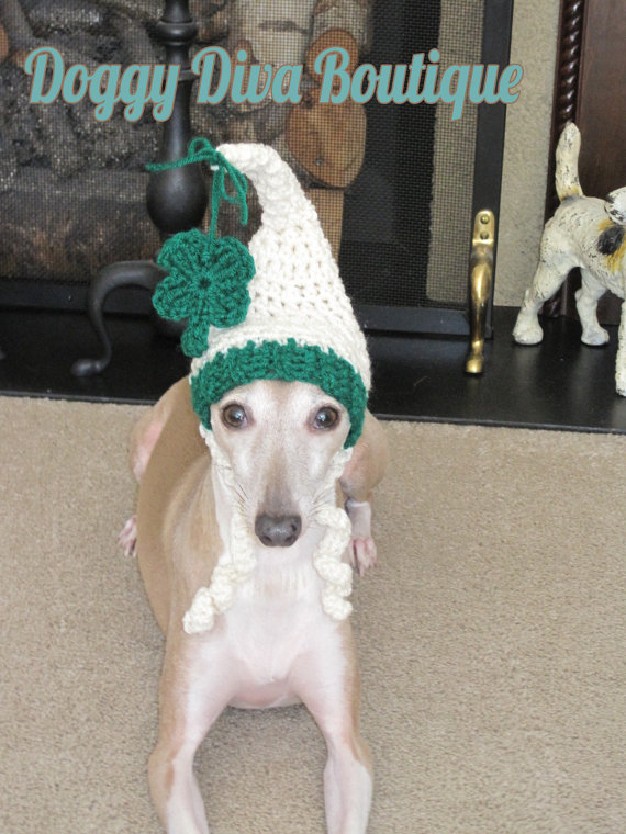 Not sure this dog is feeling the luck of the Irish. [image from Doggy Diva Boutique]