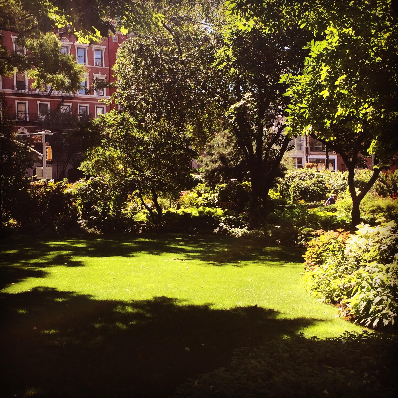 garden   everydaysparks