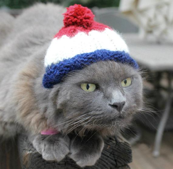 catbeanie