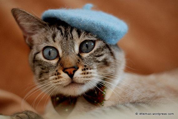 catberet